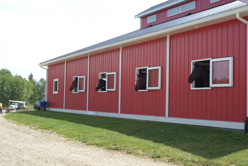 Valleyfield Farm Stables